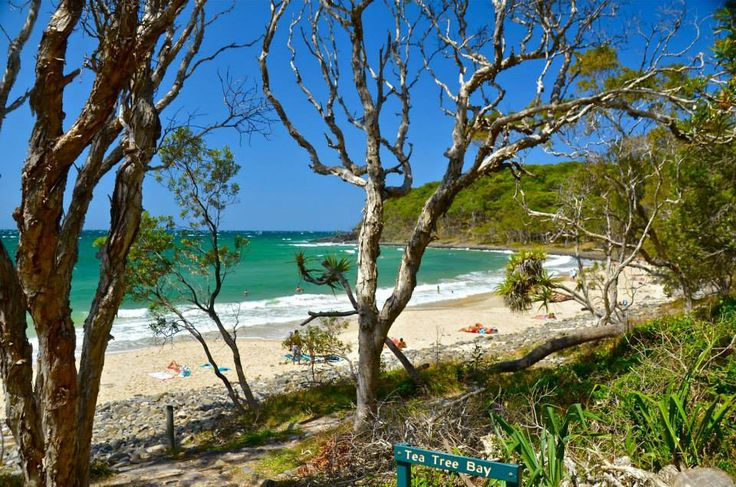 Tea tree bay, Noosa National Park, QLD