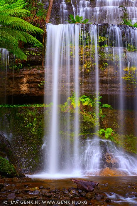 Russell Falls, Mount Field National Park, Tasmania, Australia | Ilya Genkin Travel Photography Blog