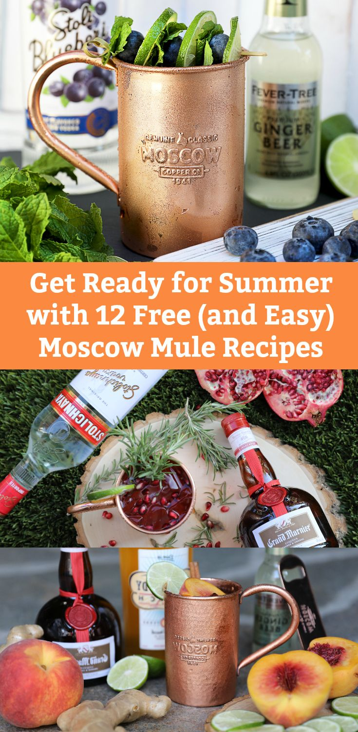 """Sign Up for Free Moscow Mule Recipe e-Book. 12 Easy AND Mouth-Watering """"Minute Mules,"""" including Peach Mule, Tequila Mule, and Blueberry Mule."""