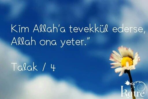 Talak 4