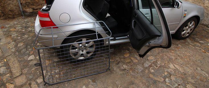 Viajar con perros Servicios