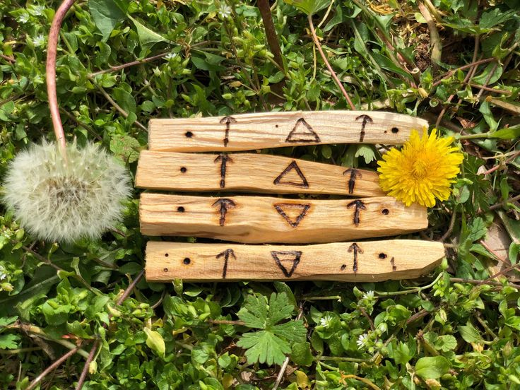 Four elements wood burned palo santo stick bundle earth