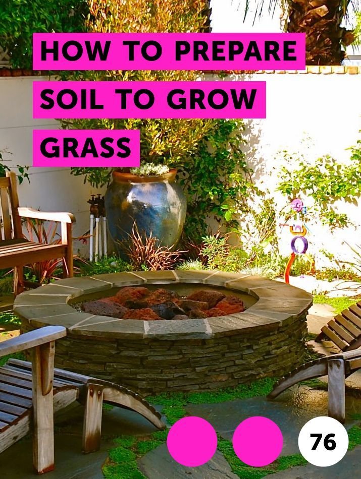 How To Prepare Soil To Grow Grass Growing Grass Rose Care