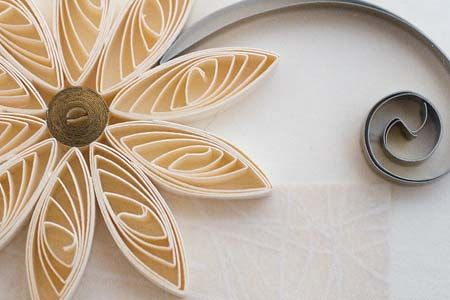 antART: Quilling: Quill Hobbies, Quill Ornaments, Quill Flower,  Pears Nautilus, Chamber Nautilus, Canvas, Quill Projects, Pretty Flower, Quill Flourish