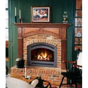 Gas Fireplaces Fireplaces Gas Inserts