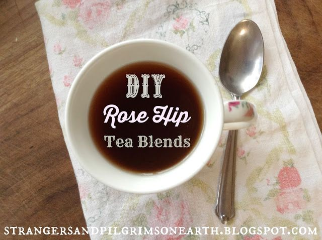 Strangers & Pilgrims on Earth: DIY Vitamin C-Rich Herbal Tea Blends Featuring Rose Hips