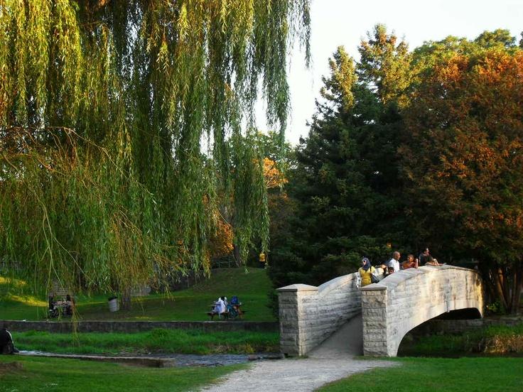 Webster's Falls  October 2011