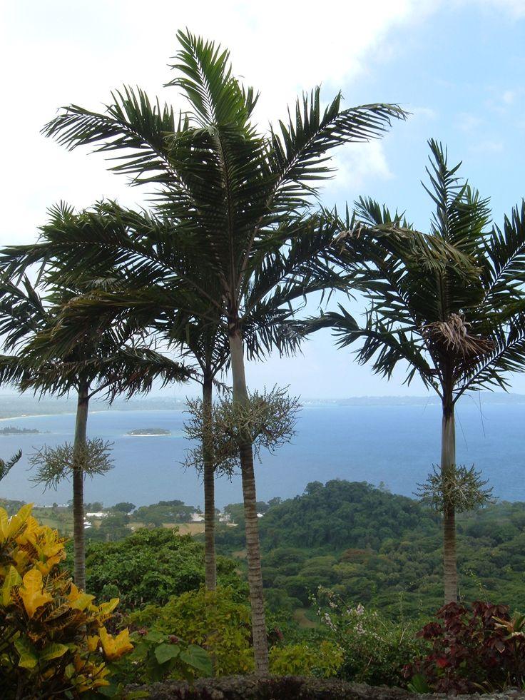 Botanical Gardens, Port Vila