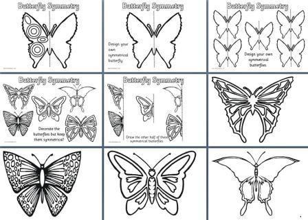 Mooie vlinders symmetrie