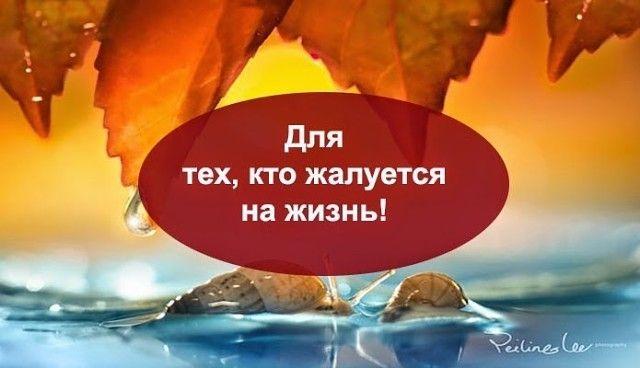 Для тех, кто жалуется на жизнь, прочитайте этот текст.  Ты несчастен? Скажи громко вслух эту фразу: «Я несчастен», так чтобы ты ее четко и ясно услышал. А потом попытайся объяснить, насколько ты несчастен глухонемому.  Мир – дерьмо? Выгляни в окно. Зеленые листья на деревьях, солнце, голубое небо. А теперь постарайся описать, какое дерьмо этот мир слепому человеку.  Ни на что не годен? Взгляни на свои руки и ноги. Они на месте? А теперь начни жаловаться о том, что ты несчастен калекам и…