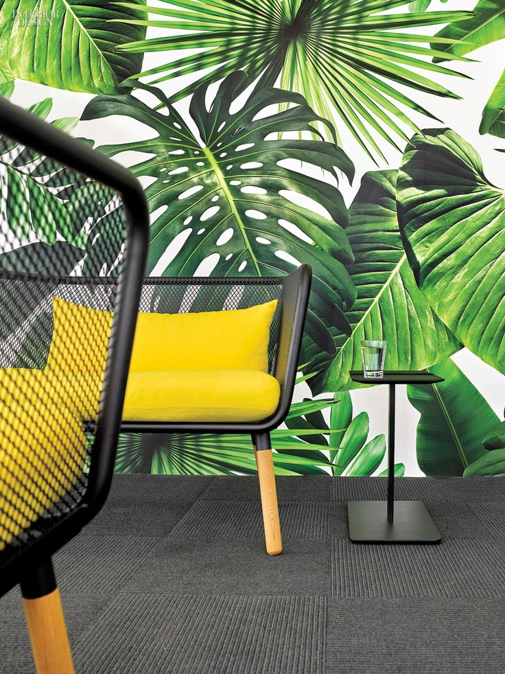 The Office of Marketing Agency Barrows Brings the African Jungle to the Concrete Jungle * Wonderwall * The Inner Interiorista