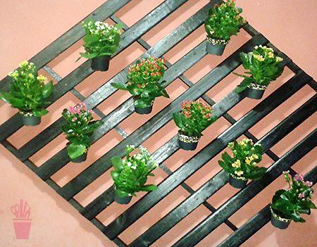 Estrutura de madeira para as plantas
