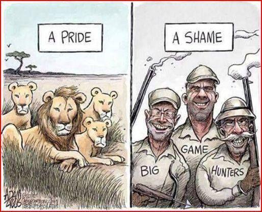 #anti #hunting #antihunting