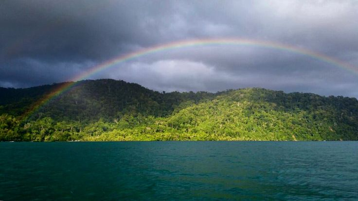 A beautiful rainbow over the rainforest of Piedras Blancas National Park, Costa Rica, this afternoon. Be part of the dream at Golfo Dulce Retreat www.gdretreat.com