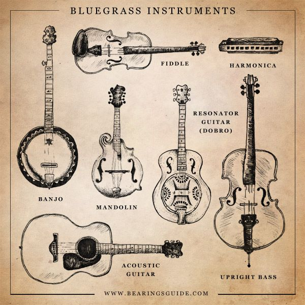 Bluegrass band: banjo, fiddle, mandolin, dobro, upright bass, guitar, and a harmonica. Now you just need a few talented folks!