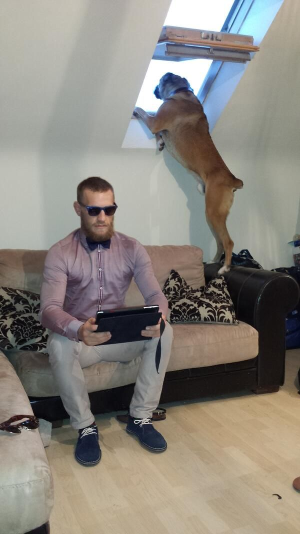 Conor McGregor back in Ireland w/ Hugo : if you love #MMA, you'll love the #UFC & #MixedMartialArts inspired fashion at CageCult: http://cagecult.com/mma