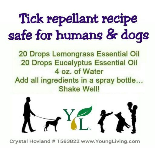 Young Living tick recipe for the summer