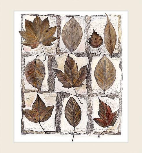 Fallen Leaves - Marlene Neumann Fine Art Photography  www.marleneneumann.com  neumann@worldonline.co.za
