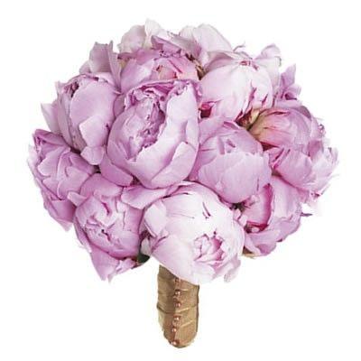 Букет из 15 розовых пионов с бесплатной доставкой в Москве http://www.dostavka-tsvetov.com/cena/pion-na-desert