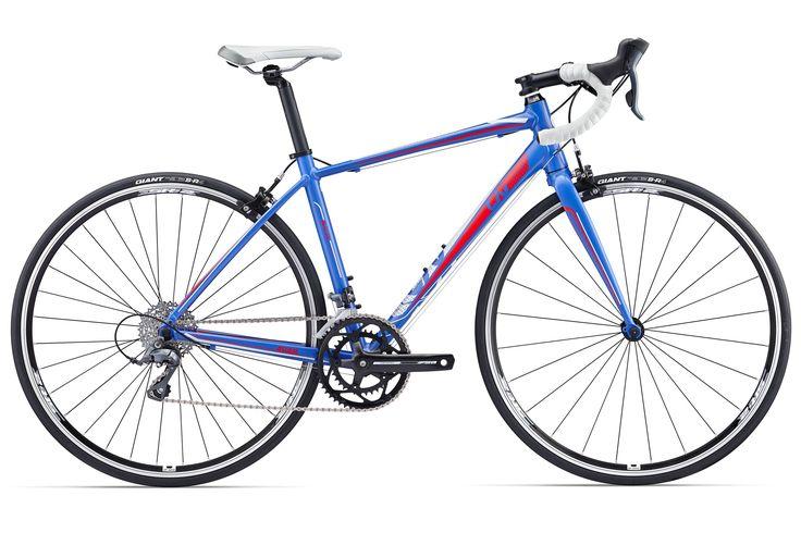 Liv Avail 3 - Kozy's Chicago Bike Shops | Chicago Bike Stores, Bicycles, Cycling, Bike Repair