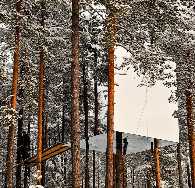Tree House, Architecture Details, Photo Essay