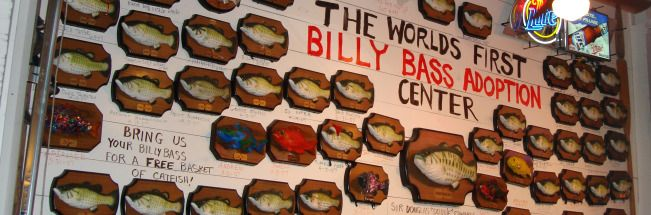 Singing Fish Find New Life At A Texas-Based Restaurant - Genius Kitchen