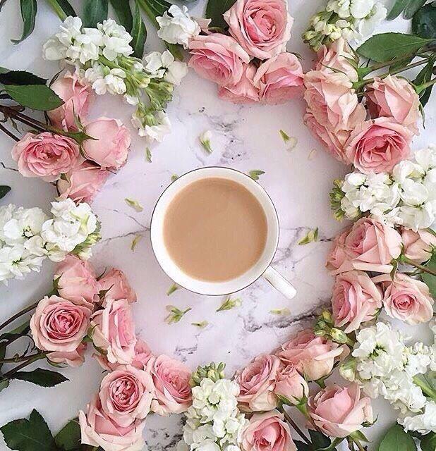 Картинки доброе утро с цветами необычные, смешные картинки раскраски