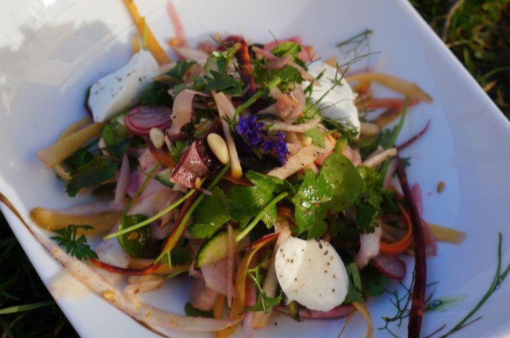 Salade aux mille saveurs Philippe Conticini