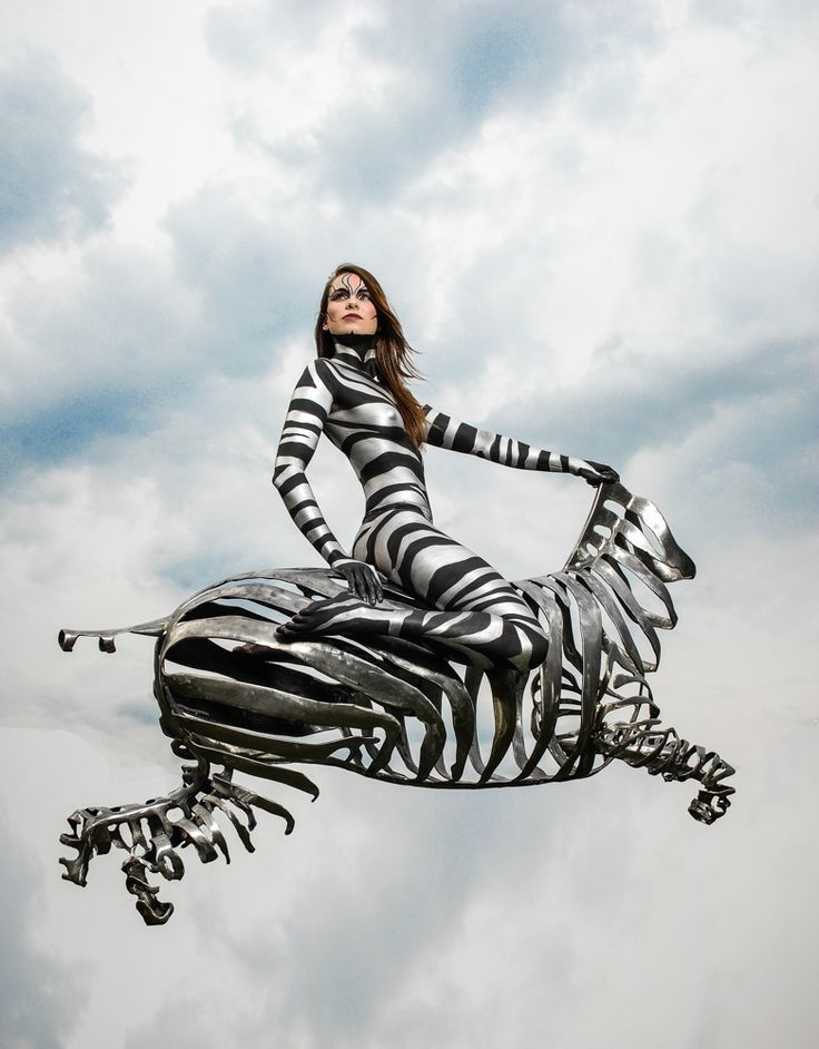 http://www.somerssteelart.com/zebra/  Zebra