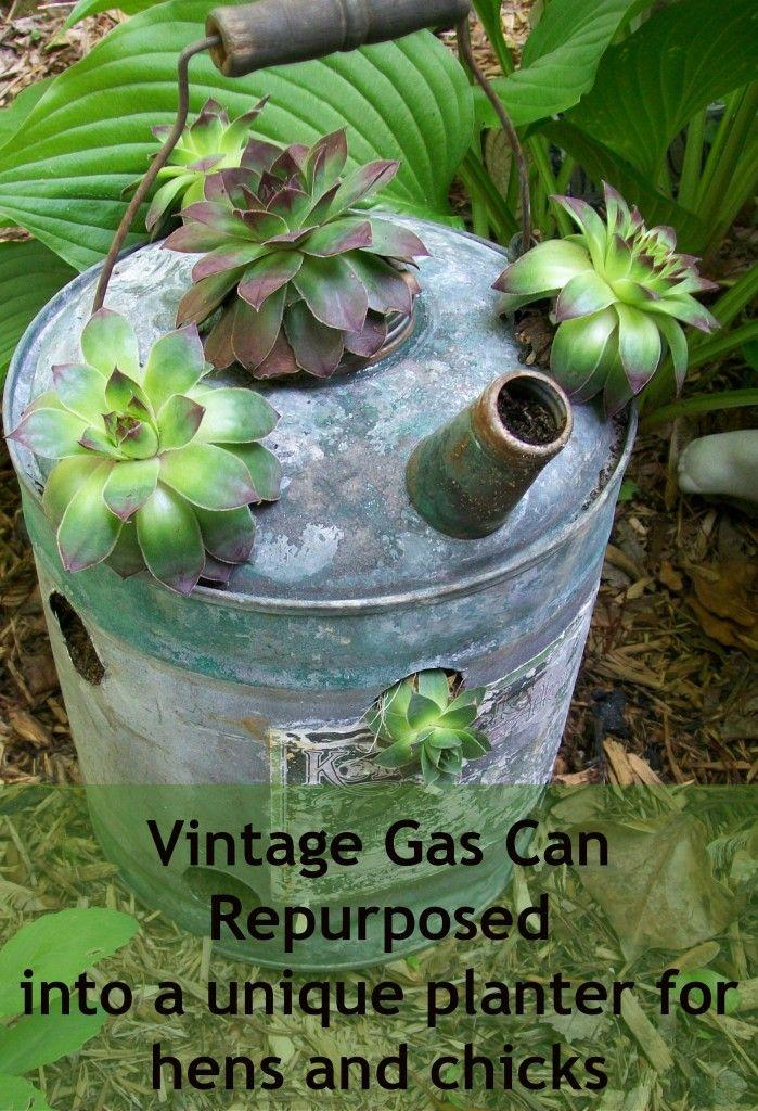 Repurposed Vintage (gas/watering) Cans. Succulent PlantersGarden ...