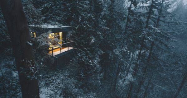 Just Pinned to Forests: Photo http://ift.tt/2qdpi2X