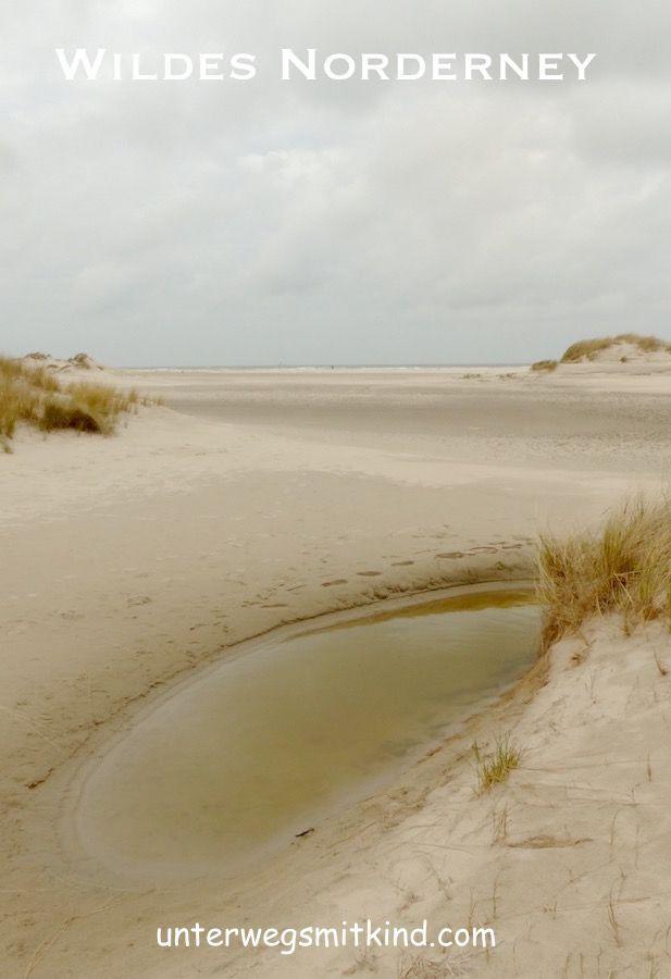 Norderney - 3 Kurzwanderungen und weitere Tipps für Naturinteressierte und Familien.