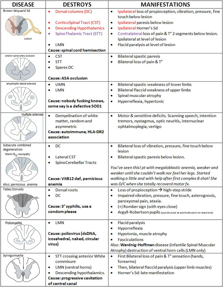 Spinal Card Lesion Cheat Sheet