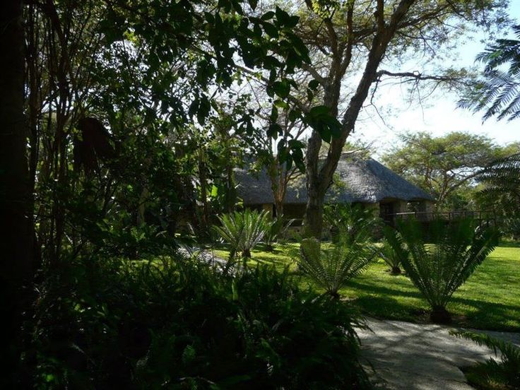 Feather Fern Lodge - Feather Fern Lodge is a beautiful lodge set in nature, situated 23 km west of Nelspruit.The self-catering lodge offers four rooms, each with an en-suite bathroom, as well as a communal kitchen and outdoor ... #weekendgetaways #nelspruit #lowveldlegogote #southafrica