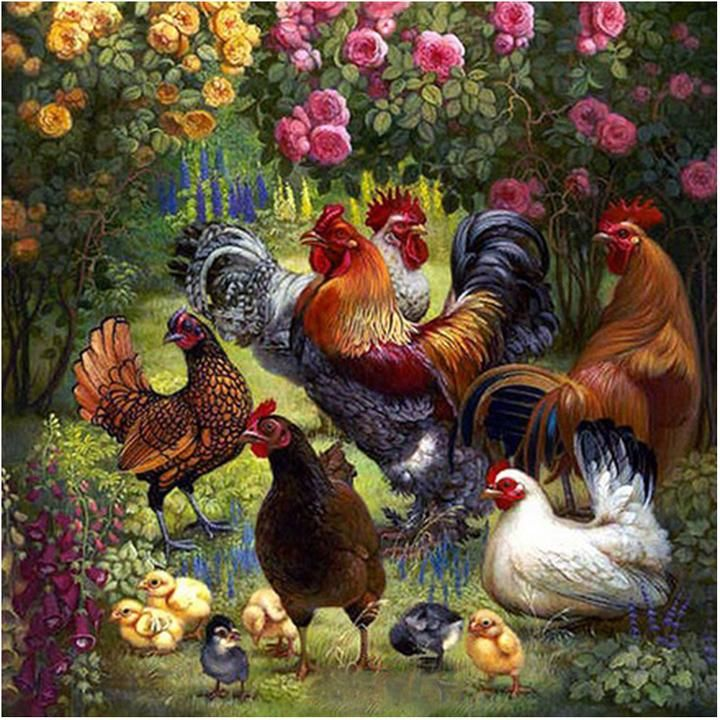 ROOSTERS/&HENS PULLING CARTOFEGGS ON COUNTRY ROAD wall bordeR Wall