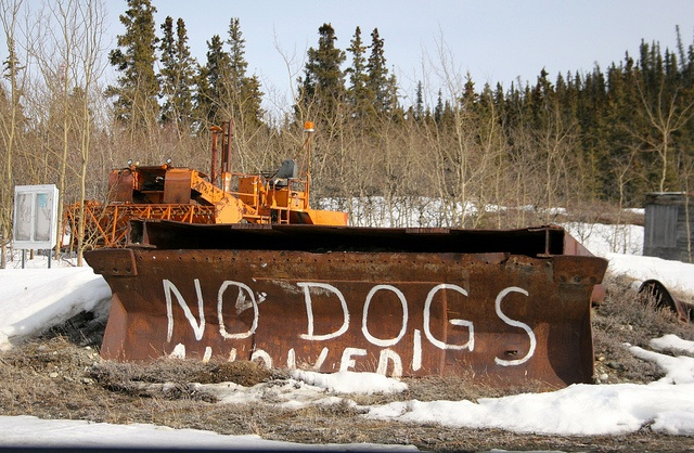 No Dogs Allowed by Tif fy, via Flickr