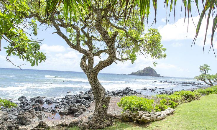 Ihana Havaiji – vinkit viikko-osakkaille   Holiday Club