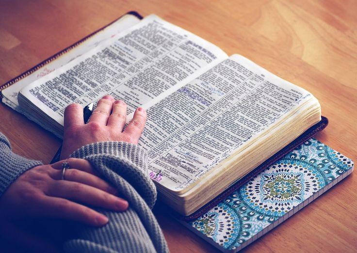 Apprendre à méditer la Bible: conseils et plan de lecture