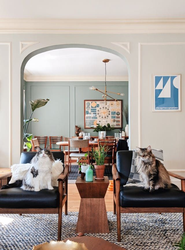 Hochwertig This Homeu0027s Got 100+ Plants, 2 Maine Coon Cats, And Style | Home,  Decoration, Design | Pinterest