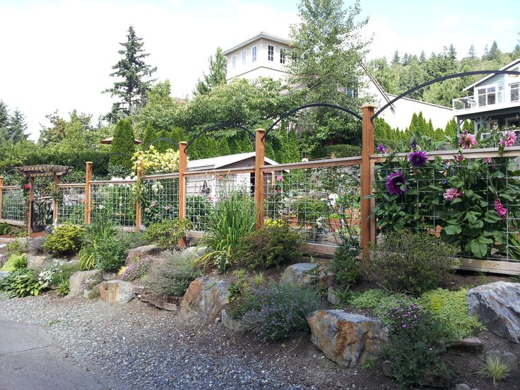 deer proof fence this is so perfect the rocks in front give depth the fence tops give height but it still maintains visual ease this is fre