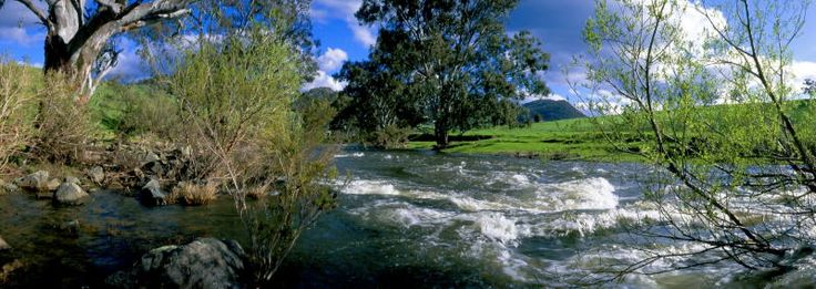 The river rapids