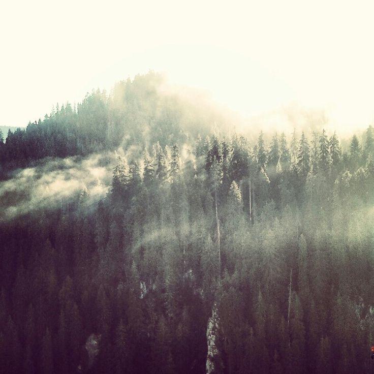 #Morning #mountain