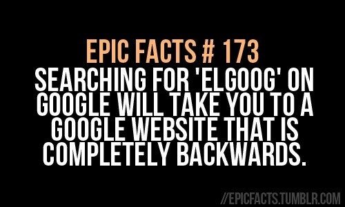 epic facts | #173 I DID THIS AND IT IS TOTALLY AWESOME!!!