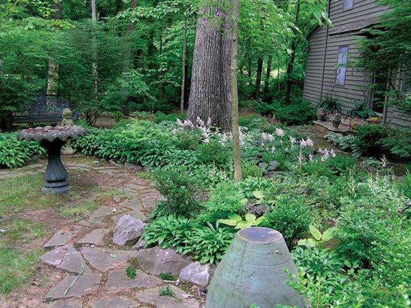 Serenity Gardening from Shade to Light | Tennessee Gardener Web Articles