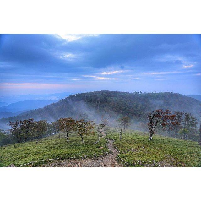 【yoichi.oshima】さんのInstagramをピンしています。 《星撮の延長で日出が岳まで登りましたが、雲は多く朝日はチラ見えでちょっと残念でした。。写真は正木峠の方向を撮っています。 . #森林 #夜明け #朝方 #大台ケ原 #雲 #いまそら #イマソラ #きょうそら #cloudsea #облаков #Dawn #рассвет #Mountain #Гора #Cloud #Облако #PHOS_JAPAN #team_jp_西 #Far_EastPhotography #Lovers_Nippon #Loves_Nippon #special_spot_ #bestjapanpics #instagramjapan #ファインダー越しの私の世界 #写真好きな人と繋がりたい #写真撮ってる人と繋がりたい #ig_japan #ig_nippon》