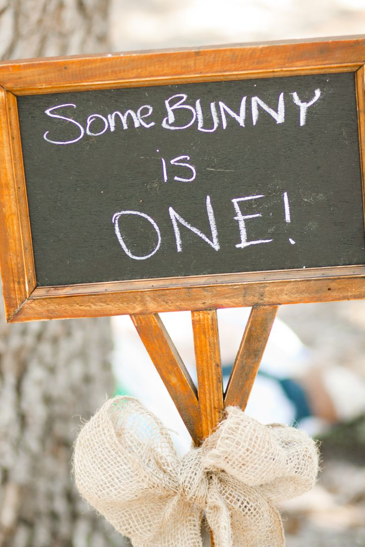 Best 20+ Peter rabbit birthday ideas on Pinterest | Peter rabbit ...