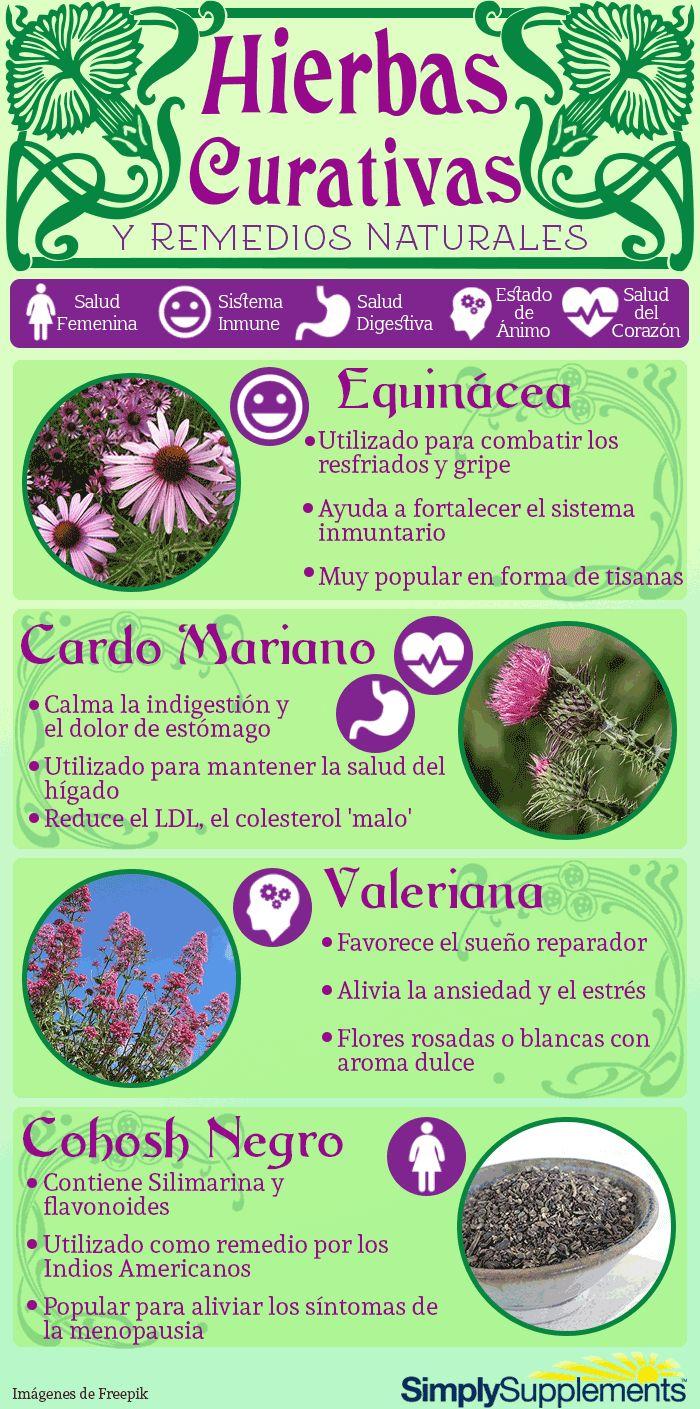 Hierbas Curativas y Remedios naturales