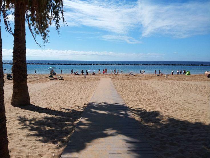 Playa de las teresitas auf #teneriffa. #strand #beach #palmtress #palmen