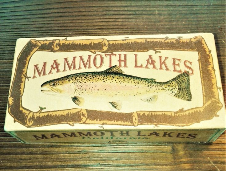 Mammoth lake fishing cabin nostalgic fishing lure boxes