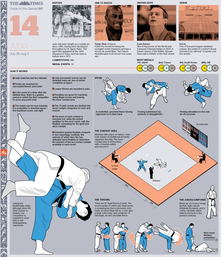 Olympic Judo Guide Infographic